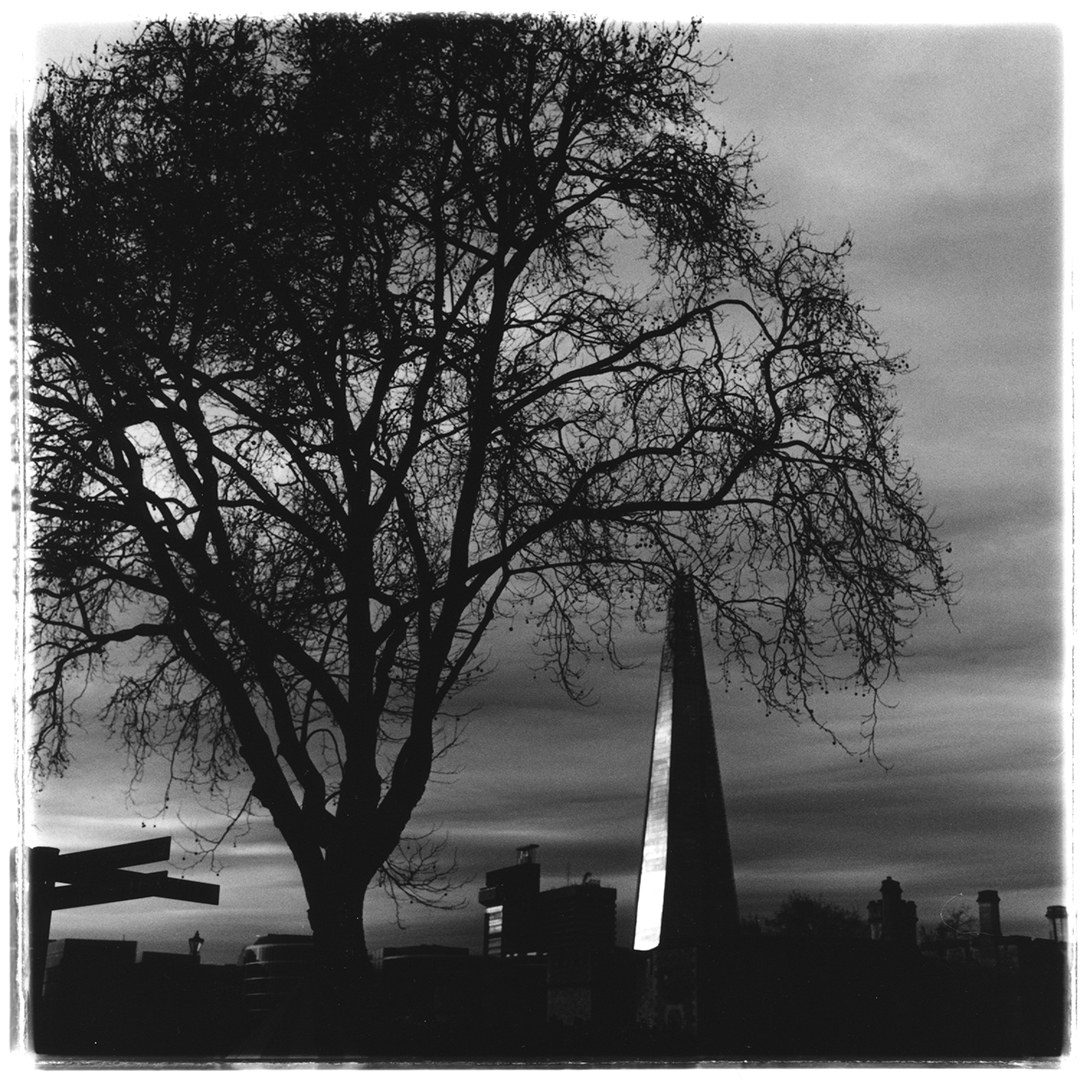 Film photograph of the Shard in London, England.  Photograph was taken from the Tower of London with a Rolleiflex 2.8e and Ilford hp5 120 film.